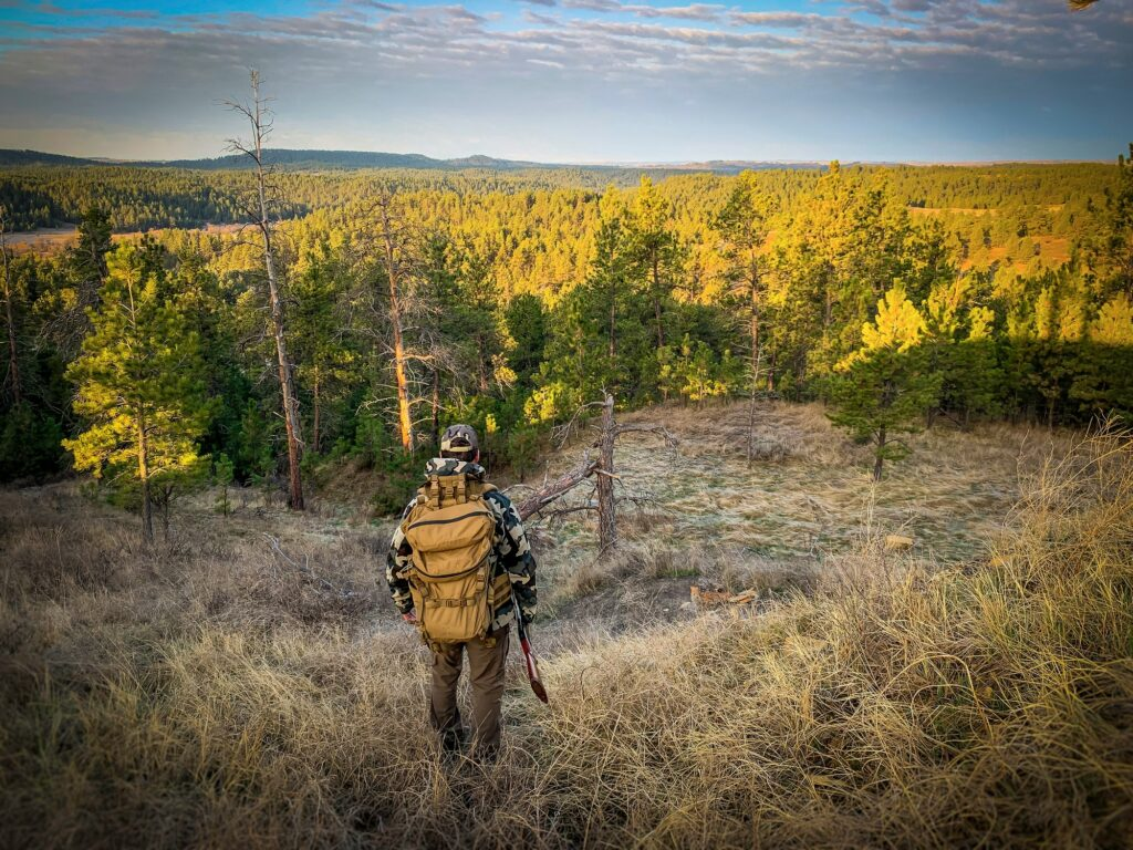 Turkey hunting in Montana